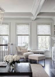 Lovely Fancy Design Ideas Living Room Blinds Fine Decoration 10 Ideas About Living  Room Blinds On Pinterest Amazing Pictures