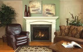 gas stove fireplace. Heatilator Gas Fireplace Stove