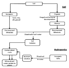 Flow Chart Of Supply Of Nutrients To The Plants