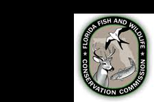 Florida Commission Conservation Un And spider Wildlife Fish 8r8xp