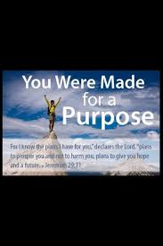 Christian Quotes On Purpose Best of The Purpose Driven Life Quotes Life Quotes