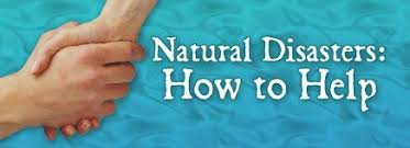 Image result for natural disaster precautions
