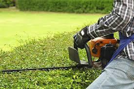 lawn maintenance orlando. Unique Orlando To Lawn Maintenance Orlando R