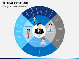 Circular Org Chart Template Templates Resume Examples