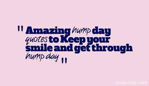 Hump Day Quotes Stunning Amazing Hump Day Quotes To Keep Your Smile And Get Through Hump Day