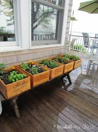 Small Picture Best 25 Herb garden planter ideas on Pinterest Herb planters