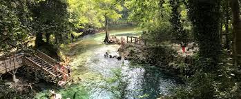 Madison Blue Spring State Park | Florida State Parks