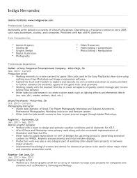 Resume Indigoverse Productions