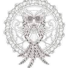 Image Thanksgiving Owl Coloring Pages Adults 19 23 Free Printable