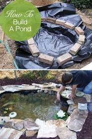 Small Picture Small Pond Designs Small Pond party tips Pinterest Pond