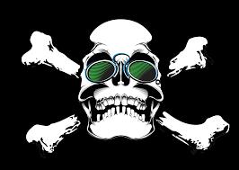 skull sungles funny bones