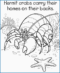 5th Grade Coloring Pages Pdf Best Of Math Coloring Pages 5th Grade