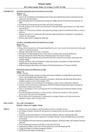 Computer Information Systems Resume Sample Information Systems Manager Resume Samples Velvet Jobs 15