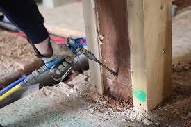Image result for termite removal cost estimate