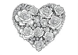 Free Coloring Pages Flowers Roses And Butterflies Adults Amazingly