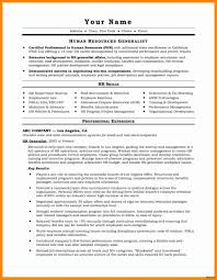 Professional Resume Templates Word Cv Template Doc Document Creative