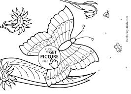 Butterfly Summer Coloring Pages For Kids Free Printable Coloing