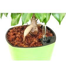organic mulch for vegetable garden vegetable garden weed barrier medium size of organic mulch best mulch