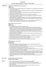 Analytics Resume Examples Director Data Analytics Resume Samples Velvet Jobs 11