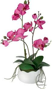 """<b>Декоративные цветы</b> в вазе <b>Dream Garden</b> """"Орхидея бордо"""", 30 х ..."""