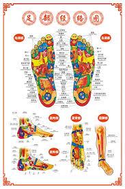 Buy Big Foot Reflex Zone Flipchart Foot Reflexology Foot