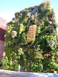 Small Picture Garden Ideas Amazing Vertical Gardening Ideas Pinterest And 116