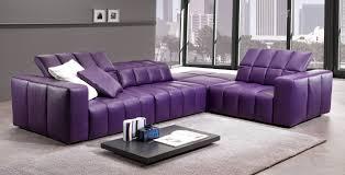 Living Room Furniture North Carolina Luxury Purple Furniture Sets Sofas Chairs For Living Room Interior