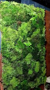 Moss Mats Best 20 Moss Bath Mats Ideas On Pinterest Bath Mat Inspiration