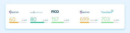 Fico Sbss The Small Business Credit Score Nav