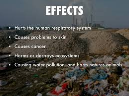 cause and effect of land pollution essay docoments ojazlink cause and effect of pollution essay corruption behavi