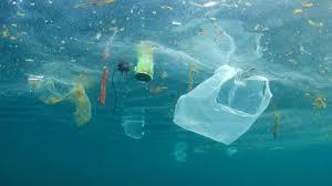Plastikmüll Im Ozean Endlich Eine Aktion Die Hilft Brigittede