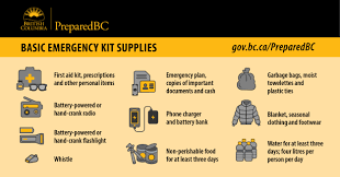 Emergency List How To Build A Household Emergency Kit And Grab And Go Bag