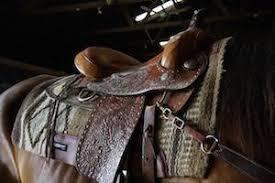 Western Saddle Seat Size Chart What Size Western Saddle Do You Need Saddle Up Corral