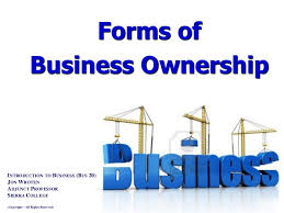 forms of ownership forms of business ownership intro to business