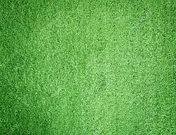 Artificial grass wall Artificial turf Stock Photo scenery1