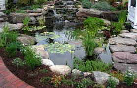 Koi Pond Design Related Keywords Suggestions Koi Pond Design Long