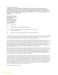 10 Director Position Cover Letter Resume Samples