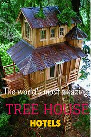 cool tree houses to build. The World\u0027s Most AMAZING Tree House Hotels! Ecotourim Within A Tree. Cool Houses To Build
