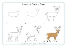 Small Picture How Do You Draw A Deer Thumbpng Coloring Pages Maxvision