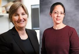 Linda Bui named associate dean of academic programs at Brandeis  International Business School