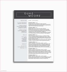 Cio Cover Letter Executive Cover Letter Examples Ceo Cio Cto Resume Genius