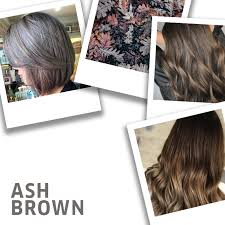 14 Ash Brown Hair Color Ideas And Formulas Wella Stories
