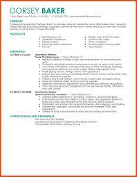 Plumbing Resume Moa Format Apprentice Plumber Construction Contempor
