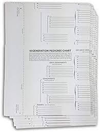 15 Generation Pedigree Chart Treeseek 15 Generation Pedigree Chart 5 Pack Blank