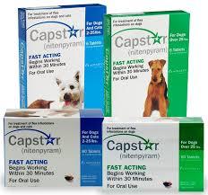 ivermectin for fleas. Modren For Capstar Capstarflea26 For Ivermectin Fleas T