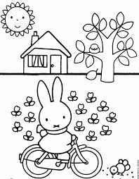 25 Printen Nijntje Ballon Kleurplaat Mandala Kleurplaat Voor Kinderen