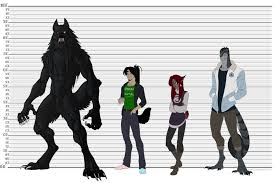 Werewolf Height Chart Clipart Human Height Growth Chart