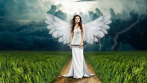 5 204 free images of angel