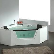 2 person whirlpool bathtub incredible whirlpool bathtubs and jetted tubs perfect bath within two person bathtub 2 person whirlpool bathtub