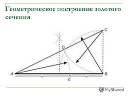 Презентация на тему РЕФЕРАТ по математике ЗОЛОТОЕ СЕЧЕНИЕ  8 Геометрическое построение золотого сечения